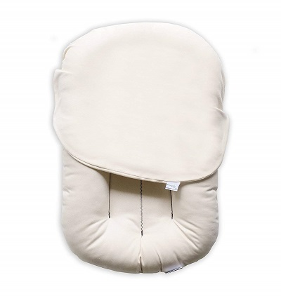 Baby Care Top 10 Co Sleeping Crib Reviews